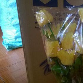 hoa vai lua giá sỉ