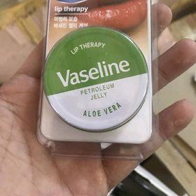 vaseline môi giá sỉ