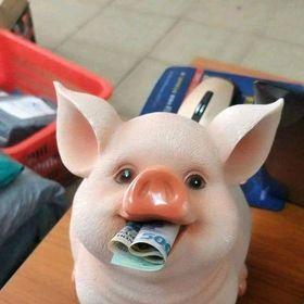 Lợn thạch cao giá sỉ