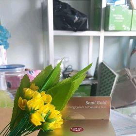 Kem dưỡng da Snail Gold Cathy Doll giá sỉ