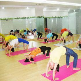 Thảm Tập Yoga Dày 5li 13kg giá sỉ
