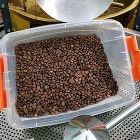 cafe hạt bột rang mộc ko pha tẩm giá sỉ