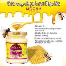 Sửa Ong Chúa giá sỉ