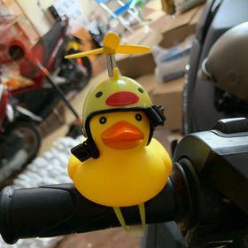 Vịt gắn xe máy có đèn đội nón bảo hiểm chong chóng giá bán buôn tốt nhất thị trường giá sỉ