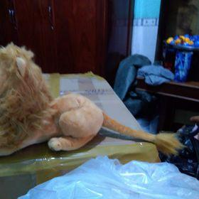 Thú nhồi bông mô hình sư tử 40cmkho sỉ Cần thơNguyên Diệp giá sỉ