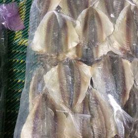 (Hàng Công ty) Cá Chỉ Vàng Loại Một - Con To, Dày Mình giá sỉ