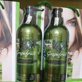 cặp dưỡng tóc hoàn hảo cho các chị em giá sỉ