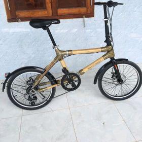 xe đạp tre gấp thân thể thao giá sỉ