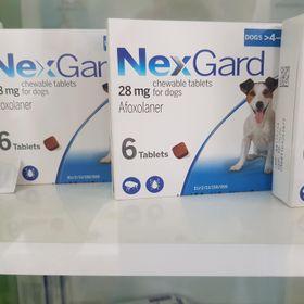 Thuốc trị ve ghẻ bọ chét trên chó hộp 6 viên Nexgard cho chó 4-10kg giá sỉ