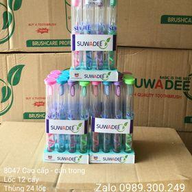 Bàn chải đánh răng cao cấp SUWADEE,mẫu 8047 cán trong giá sỉ