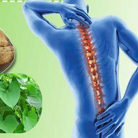 Dây đau xương - Trị đau xương khớp hiệu quả giá sỉ