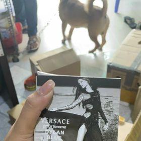 Versacccce nữ thần giá sỉ