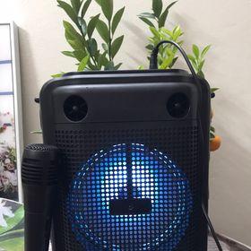 Loa Karaoke Bluetooth LZ6101 có đèn led kèm mich hát có lỗ usb và thẻ nhớ giá sỉ