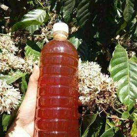 1 lít Mật ong hoa cà phê nguyên chất 100% giá sỉ